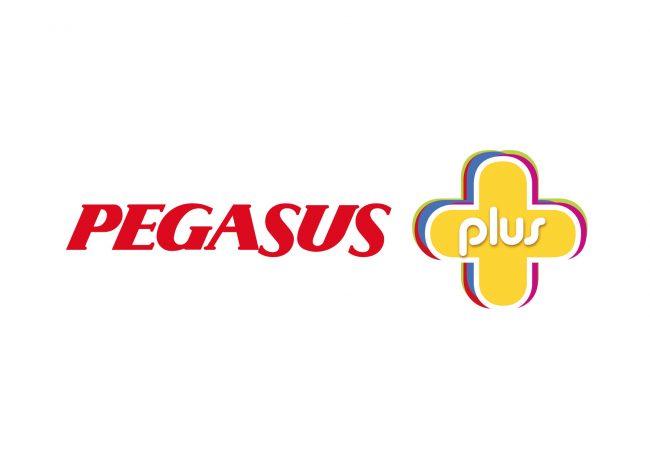 ING Pegasus Plus Kart yenilendi