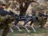 ABD Hava Kuvvetleri, tatbikatta robot köpekleri kullandı