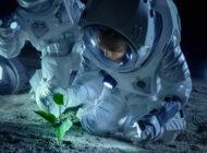NASA 500 bin dolarlık ödüllü gıda yarışması düzenledi